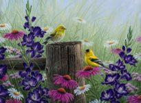 goldfinchmeadow