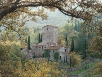 hills-of-chianti-by-rod-chase-6134