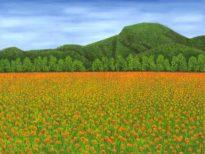 Marigolds jpg